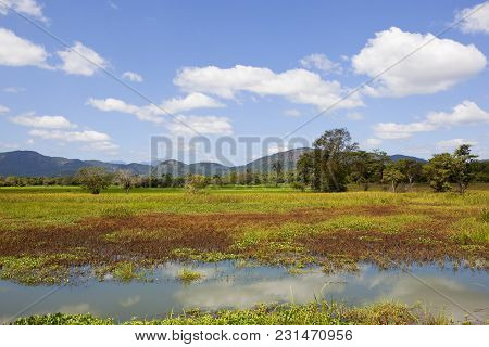 Scenic Lakeland With Woodland And Mountains In Wasgamuwa National Park In Sri Lanka Under A Blue Sky
