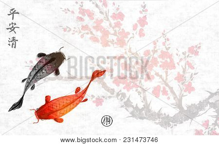 Sakura Branch In Blossom And Two Big Fishes. Traditional Oriental Ink Painting Sumi-e, U-sin, Go-hua