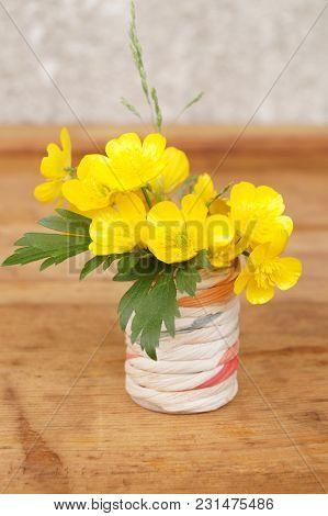 Medicinal Plant - Creeping Buttercup, (ranunculus Repens)