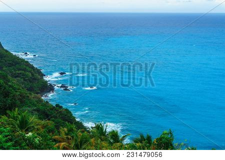 Admirable Natural Wild Landscape With Rocky Mountains Overgrown Dense Green Jungle Tree, Palm And Cl