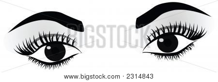 High Detailed Woman Eyes