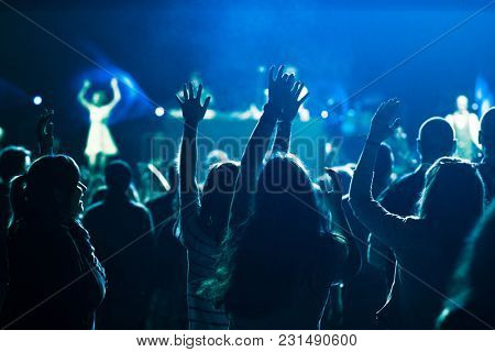 crowd enjoying live concert at music festival