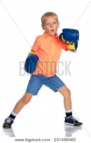 Sports Boy In Boxing Gloves. The Concept Of A Harmonious Development Of The Child, A Healthy Lifesty