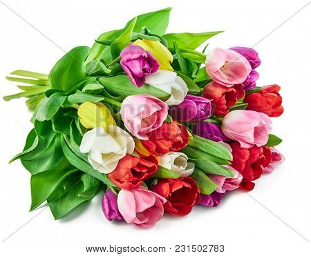 Spring tulips flowers bouquet, romantic greeting gift for birthday or Saint Valentines day holiday, isolated on white background.