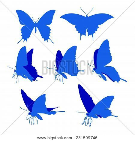 Realistic Swallowtail Butterfly Silhouettes Illustration On White Background