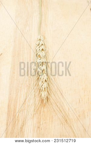 Single Of Gold Ears Of Wheat Isolated On Brown Wooden