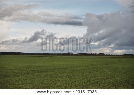 Green Field With Trees And Blue Sky At Autumn Time