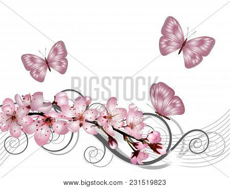 Blossoming Sakura Cherry Branch With Pink Flowers On White Background. Cherry Blossom Spring Design.