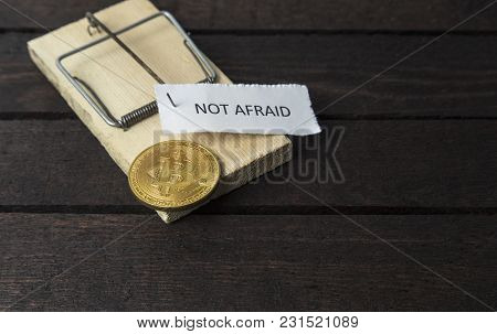 The Word: Not Afraid Pinned On Mouse Trap With Bitcoin