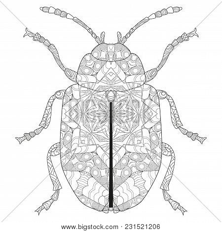 Beetle Zentangle Styled With Clean Lines For Coloring Book And T-shirt Design