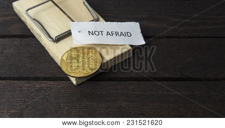 The Word: Not Afraid Pinned On Mouse Trap With Backside Of Bitcoin