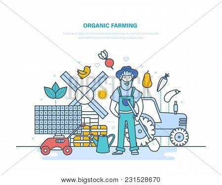 Organic Farming, Gardening. Farmer Among Plants, Organic Clean Ecological Products. Garden Tools, Pr