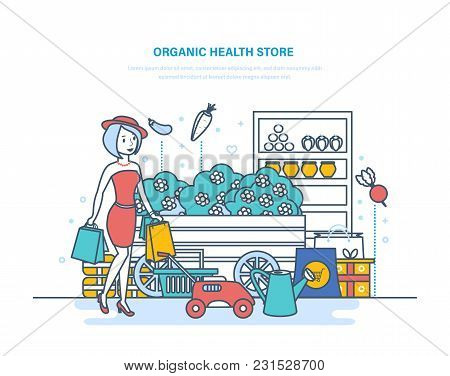 Organic Health Store. Shopping Of Products, From Farming, Gardening, Buying In Supermarket. Plants,