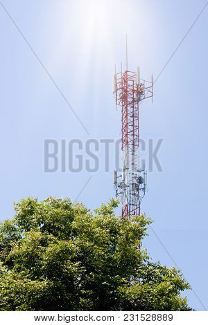 Antenna Signal On Top Of Tree Under Blue Sky.