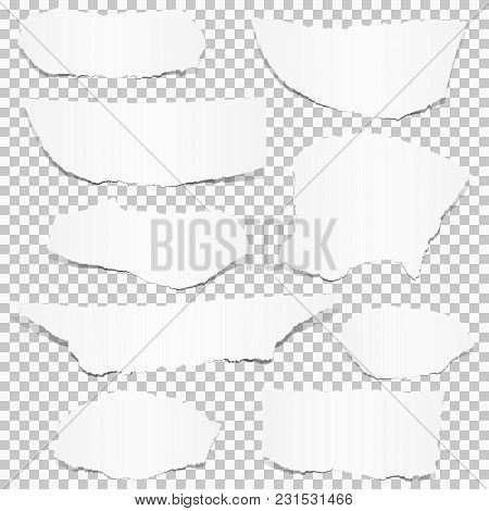 Collection Of Paper Scraps Colored White With Transparency In Vector File