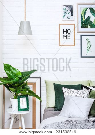 Bedroom Interior In Gray Green Tones With Ficus And Pictures On A White Wall Vertically
