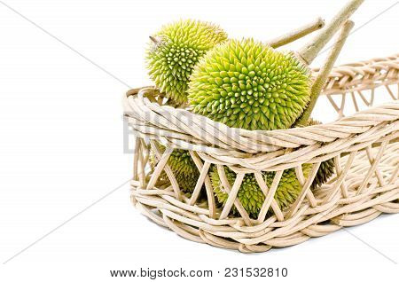 Group Of Durian On Basket,king Of Fruits Isolated On White Background