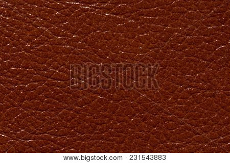 Stylish Brown Leather Texture With Shiny Surface. High Resolution Photo.
