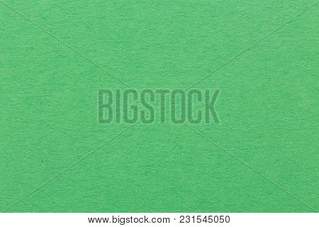 Soft Green Paper Texture. High Quality Image.