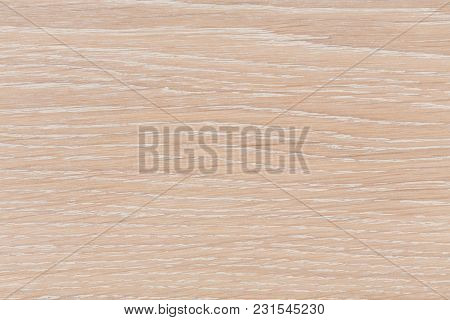 Bright Wood Texture Background Surface With Old Natural Pattern. Hi Res Photo.