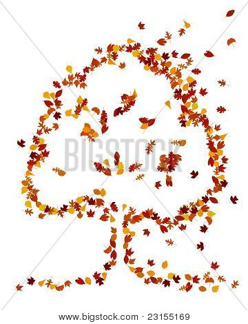 Autumn leaves form a tree shape