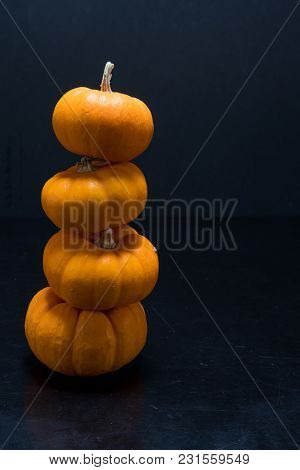 Four Jack Be Little Pumpkins Stacked With Copy Space To The Right