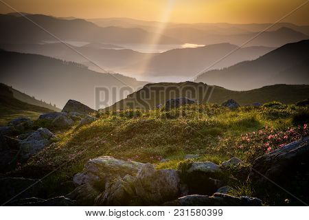 Early Sunrise, Gold Sky In Rodnei Mountains