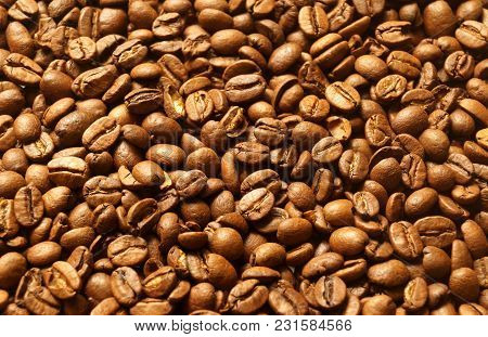 Roasted Brown Coffee Beans Pattern, Background, Top View Flat Texture