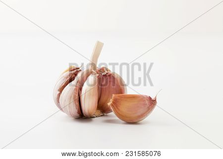 Garlic Head On White Background