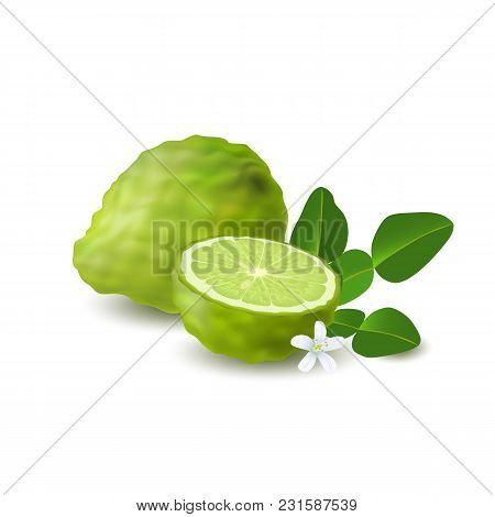 Isolated Colored Green Whole And Half Of Juicy Bergamot, Kaffir Lime With Green Leaves, White Flower