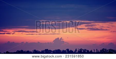 Sunset In The Steppe. Summer Season, Evening.  Panoramic And Web Banner.