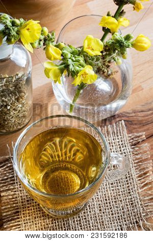 A Cup Of Mullein (verbascum) Tea With Fresh Blooming Mullein