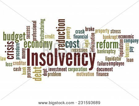 Insolvency Word Cloud Concept