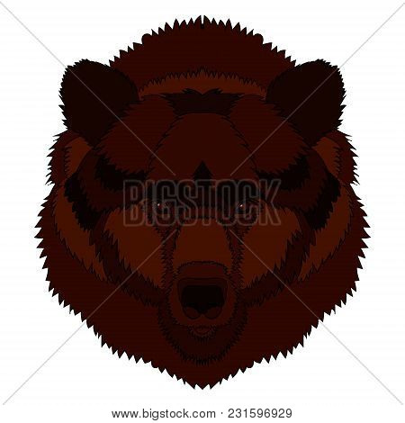 Illustration Of A Bear S Head. Vector Graphics. Hand Drawing.