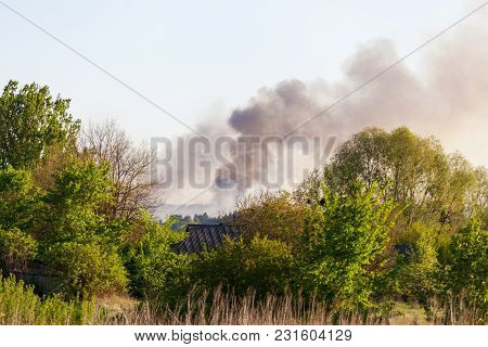 Forest Fire View From Afar