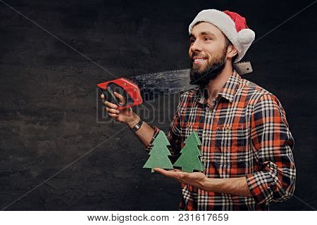 Positive Male Holds Fir Tree And Handsaw.