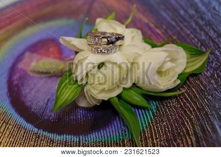 Wedding Rings Roses Day Ceremony Feather, Valentine, Silver, Closeup, Fashion,