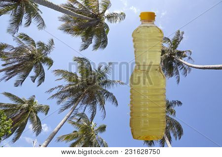Coconut Oil Cooking, Coconut Oil On Garden  Tree Coconut Light Background