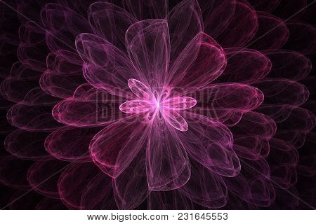 Bright Abstract Fractal Violet Flowers, Fractal Pink Flowers Fantasy