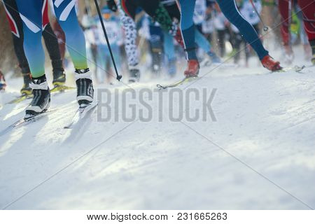 Ski Marathon - De-focused View Of Many Legs Of Sportsmen Running On Snow, Telephoto Shot