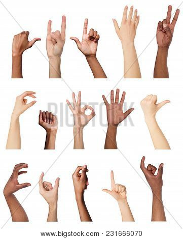 Various Hands Gestures And Signs Collection Isolated On White Background. Collage Of Multiple Shots