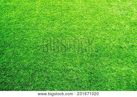 Texture Of Plastic Artificial Grass And The Rubber Pellets On School Yard