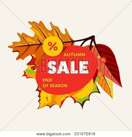 Autumn Sale Design Template, Vector Illustration. End Of Season Banner With Colorful Leaves On White