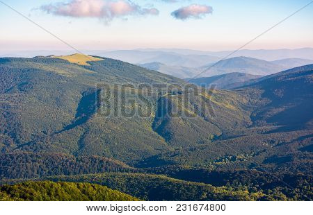 Beautiful Mountainous Landscape On Summer Morning. Forested Hill Lit By Morning Light. Lovely Nature