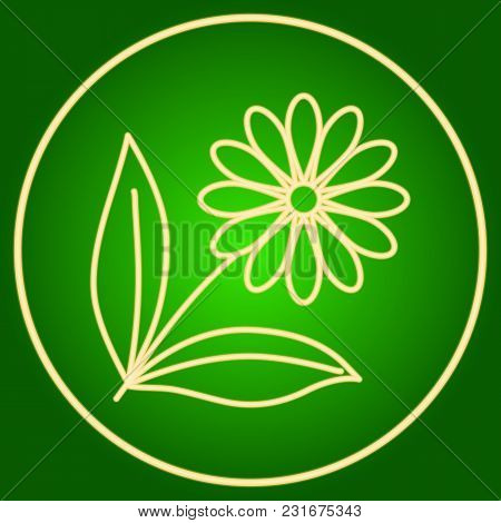 A Flower With Leaves In A Neon Circle. Easter. Neon Icon. Neon Sign. Effect Of Neon Glow. Vector Ima
