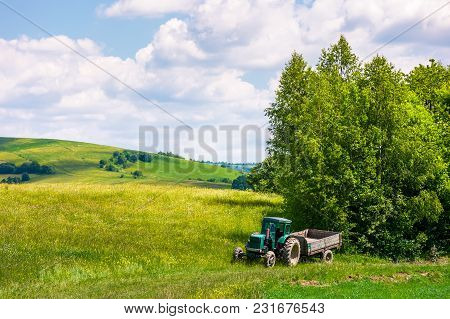 Grassy Fields On Rolling Hills In Summer. Beautiful Countryside Scenery In Carpathian Mountains Unde