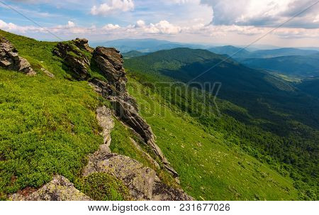 Grassy Hillside With Boulders. Lovely Summer Landscape Of Carpathian Mountain
