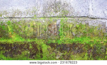 Texture Of Mossy Brick Wall, Background Photography