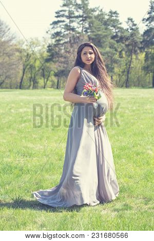 Beautiful Pregnant Woman In A Long Dress In A Meadow