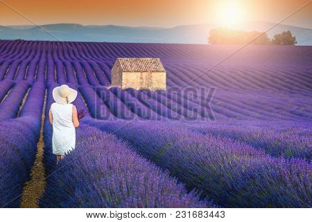 Beautiful Free Happy Woman Enjoying Nature. Freedom Concept With Stunning Lavender Field Near Valens